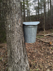 Vermont Maple Sap Bucket